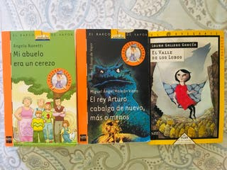 Lote libros 5o primaria-1o secundaria