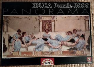 Puzzle Educa 3000 piezas