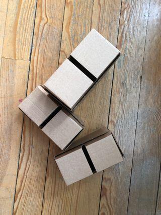 Ladrillos de cartón