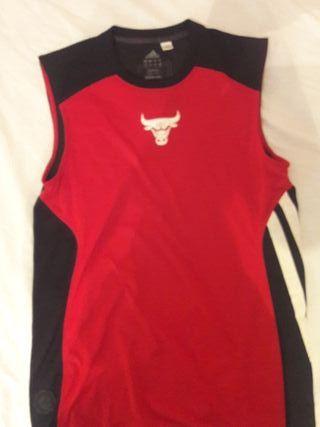 Camisa entreno Rose Chicago Bulls