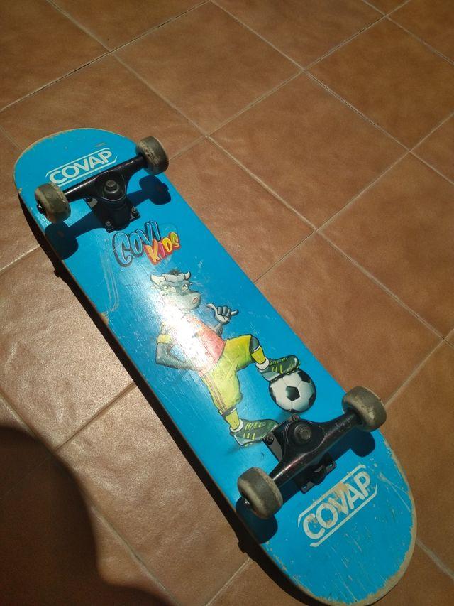 skate board mono patín tabla