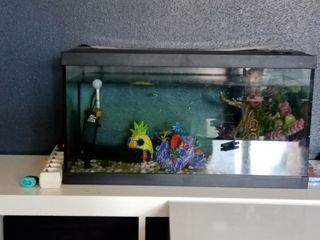 se vende acuario