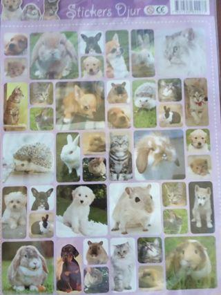 Stickers Djur de Animales