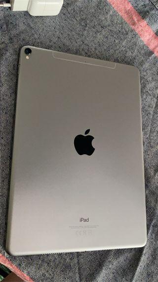 iPad Pro 256 Gb 2019