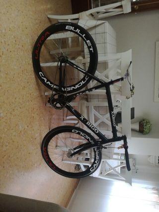 bici fixie carbono