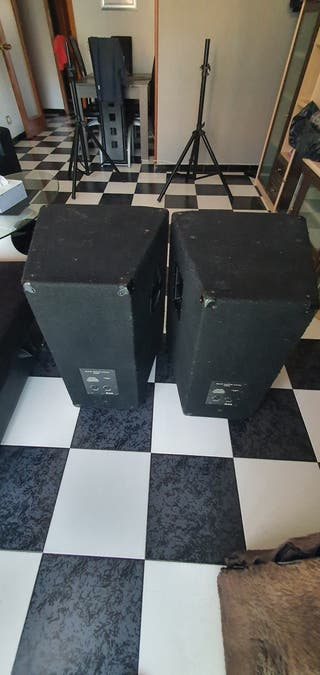 Altavoces profesionales MAG MD534