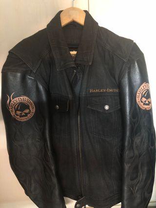 Chaqueta Harley Davidson oficial