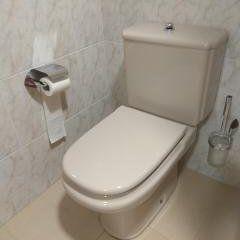 Sanitario WC Roca Gala
