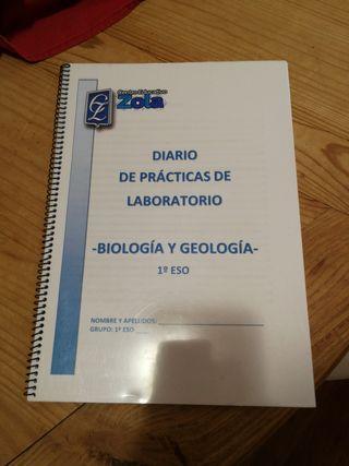 Diario de Prácticas de Laboratorio, colegio Zola