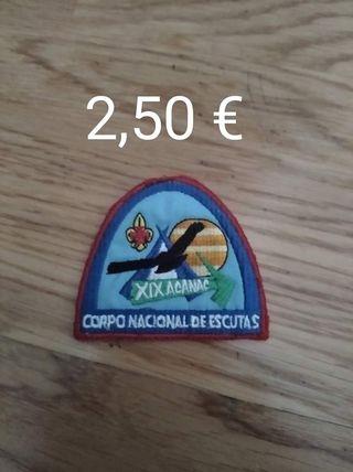 insignia scout