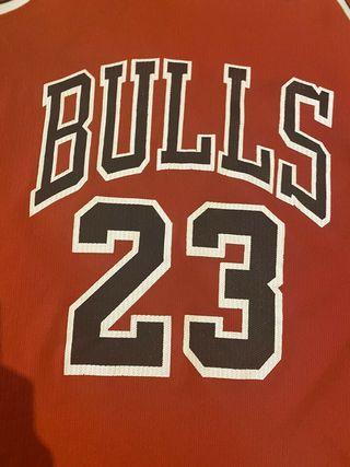 Jordan Chicago Bulls Camiseta Champion 90s