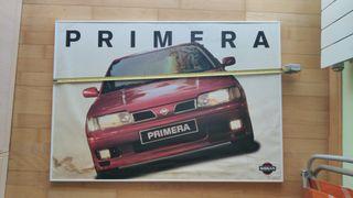 Cuadro Primera P10