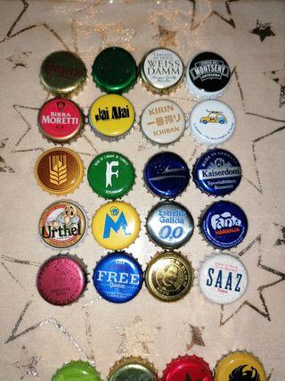 colección de chapas de cerveza