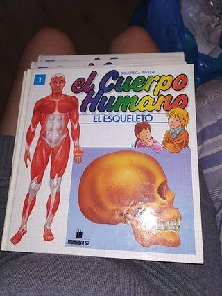 """coleccion libros """"El cuerpo humano """""""