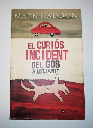 Libro Literatura juvenil. Incident gos mitjanit.