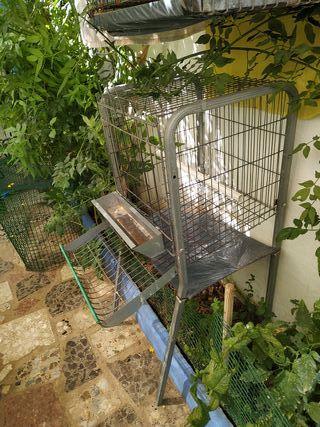 Jaula para gallinas ponedoras