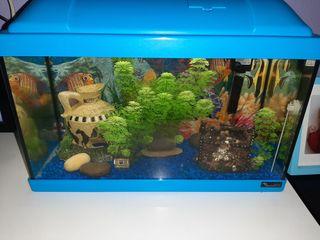pecera 20 litros aquarium nueva