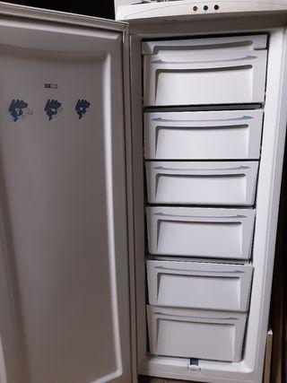 Cajones congelador vertical Bluesky