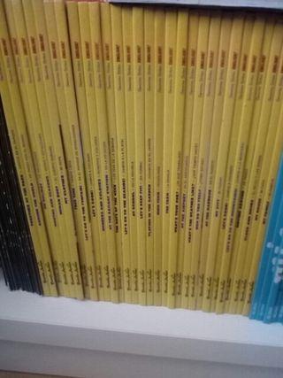 Colección de Geronimo stilton en inglés