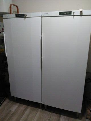 Armario frigorífico y armario de congelaciónLIEBHE
