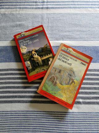 Libros juveniles en catalán