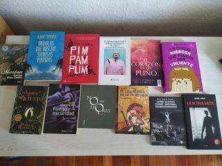 12 libros de novelas y poesías