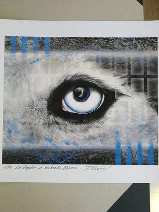 Litografia Ramcé (ojo lobo) 33x48cm