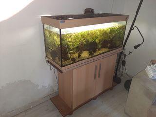 acuario con mueble 250 litros.