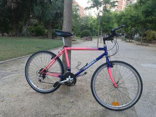 Bicicleta de montaña vintage