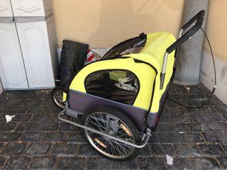 Carro para niños