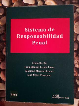 Libros Fun. del sistema de responsabilidad penal