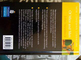 5 libros para aprender inglés, novela juvenil
