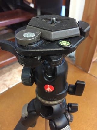 Trípode Manfrotto 488 RCP.