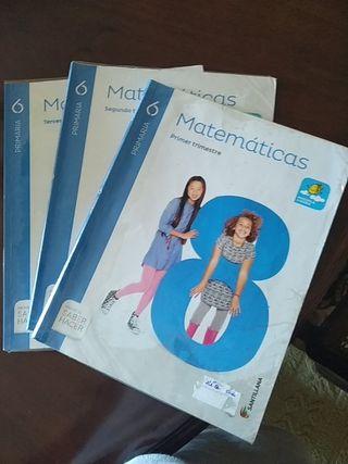 Libro de matemáticas 6 primaria