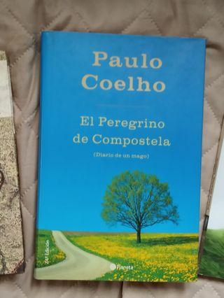 El peregrino de Compostela de Coelho