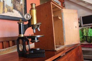 microscopio CARL ZEISS