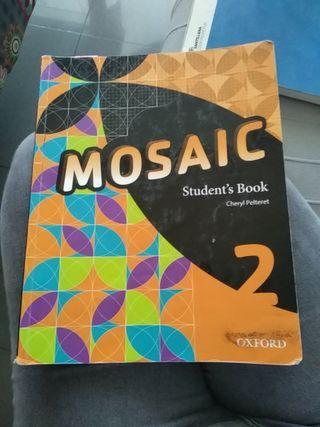 mosaic segundo eso