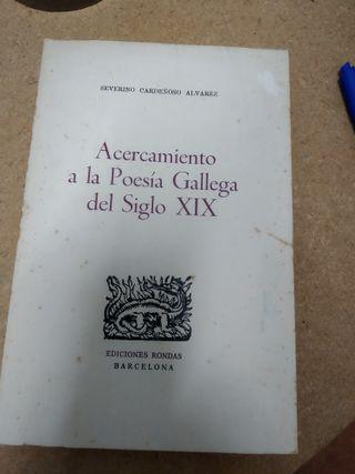 ACERCAMIENTO A LA POESÍA GALLEGA DEL SIGLO XIX
