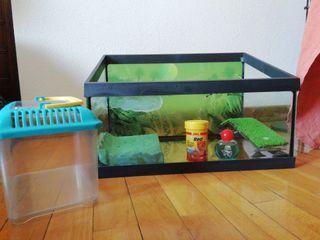 tortuguera acuario