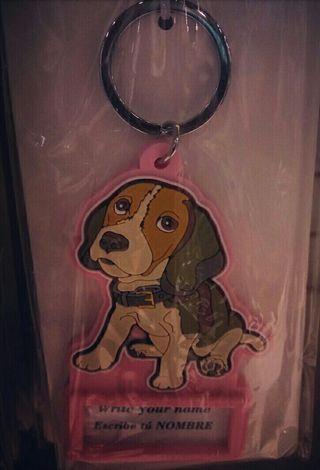 Llavero beagle