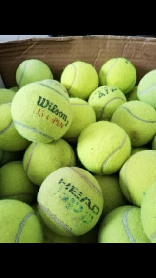 50 pelotas de tenis