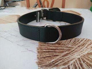collar perro cuero Muscat 75cm