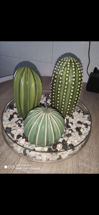 Pack figuras cactus+ plato con piedras