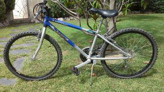 Bicicleta niño Cups Kiddy 240 (24')