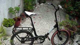 "Bicicleta plegable Regina 20"""