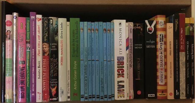 Lote de 99 libros infantiles y juveniles