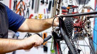 Mecánico de bicis profesional