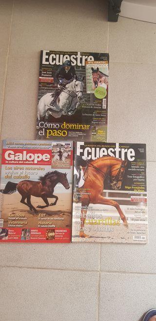 revistas caballos