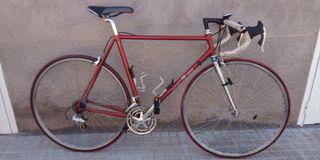 Bicicleta Cicle Pasion campagnolo
