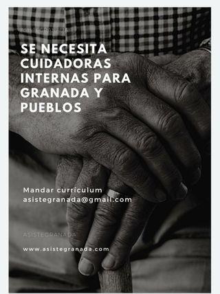 Quesos Venezolanos en Granada